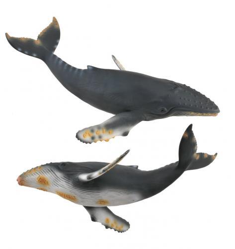 Balena cu cocoasa - Collecta - Jucarii copilasi - Figurine pop
