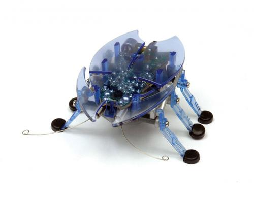 Beetle - Hexbug - Jucarii copilasi - Jucarie interactiva