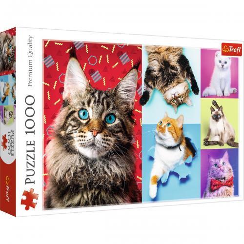 Puzzle trefl 1000 pisicute fericite - Jocuri pentru copii - Jocuri cu puzzle